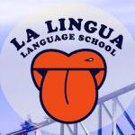 La Lingua   Language for Real Life